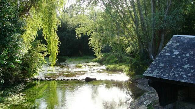 The river Conie, a wild watercourse
